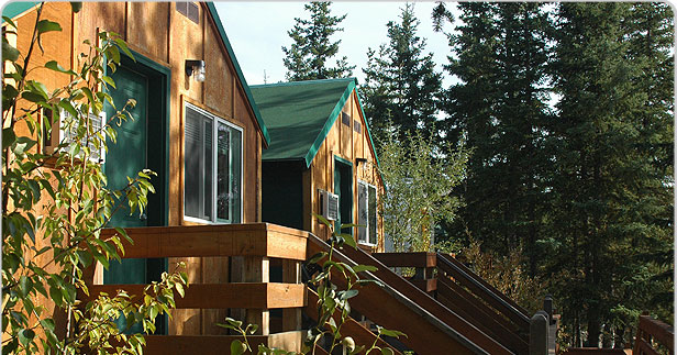 Denali national park lodging private economy cabins for Denali national park cabins